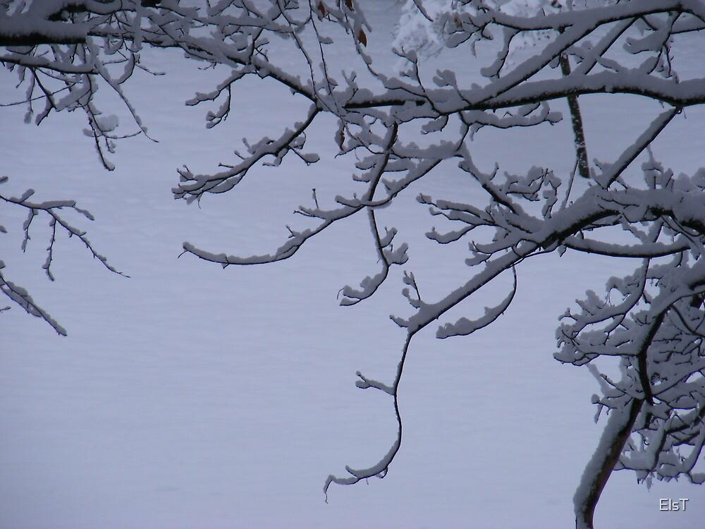 Snow Scrolls by ElsT