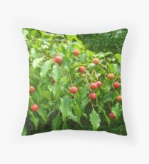 The Fruit of the Kousa Dogwood Tree Throw Pillow