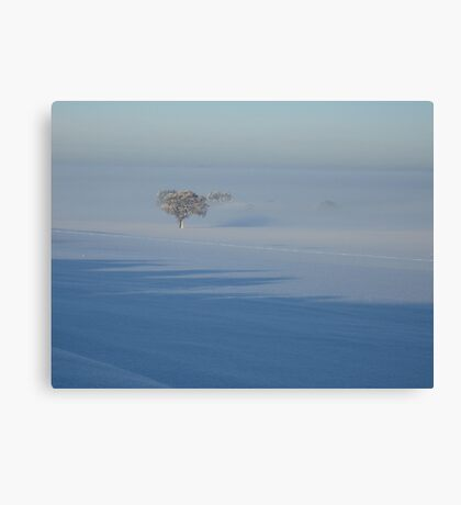 Trees in the Frozen Mist Canvas Print