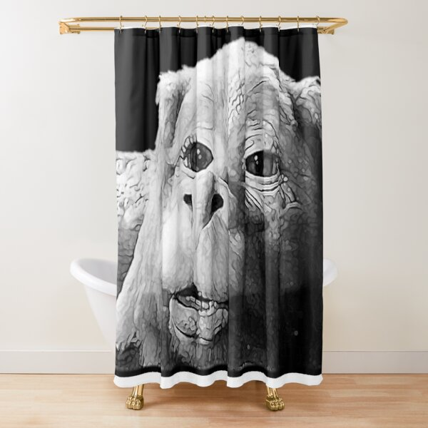 Falkor The Luck Dragon From The Neverending Story Design   Shower Curtain