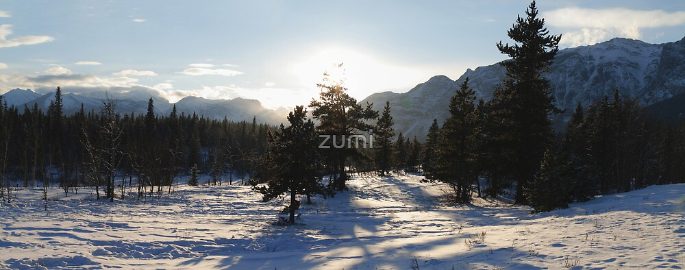 Snow and shadows by zumi