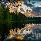 Pond by Mikko  Suhonen