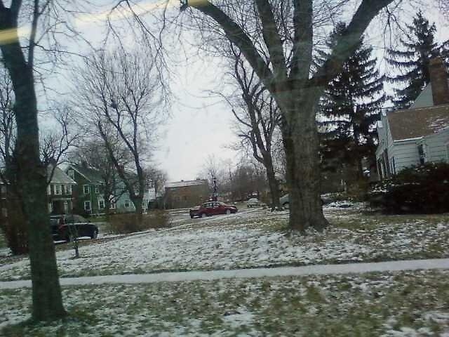 snow scene by catnip addict manor