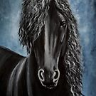 Friesian beauty by Agnieszka A. Jargiello