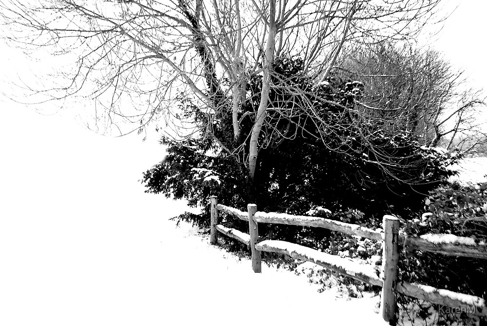 Snow Fence by KarenM