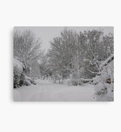 Winter Lane Canvas Print