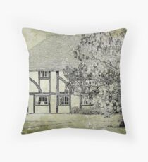 Age Before Beauty..... Throw Pillow