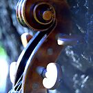 growth spiral © 2010 patricia vannucci  by PERUGINA