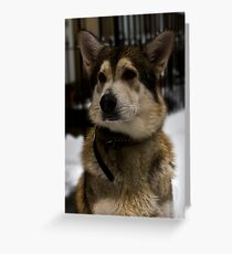 Nook Greeting Card