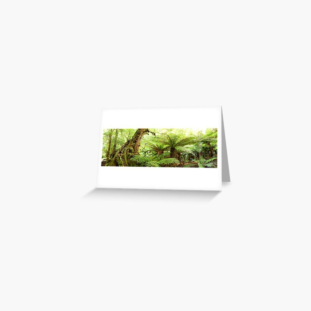 Myrtle Tree, Tarra Bulga National Park, Australia Greeting Card