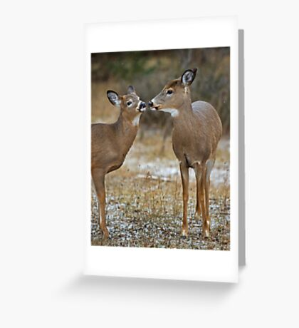 Hey, I know you ! Greeting Card