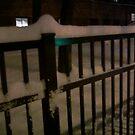 cold night by catnip addict manor