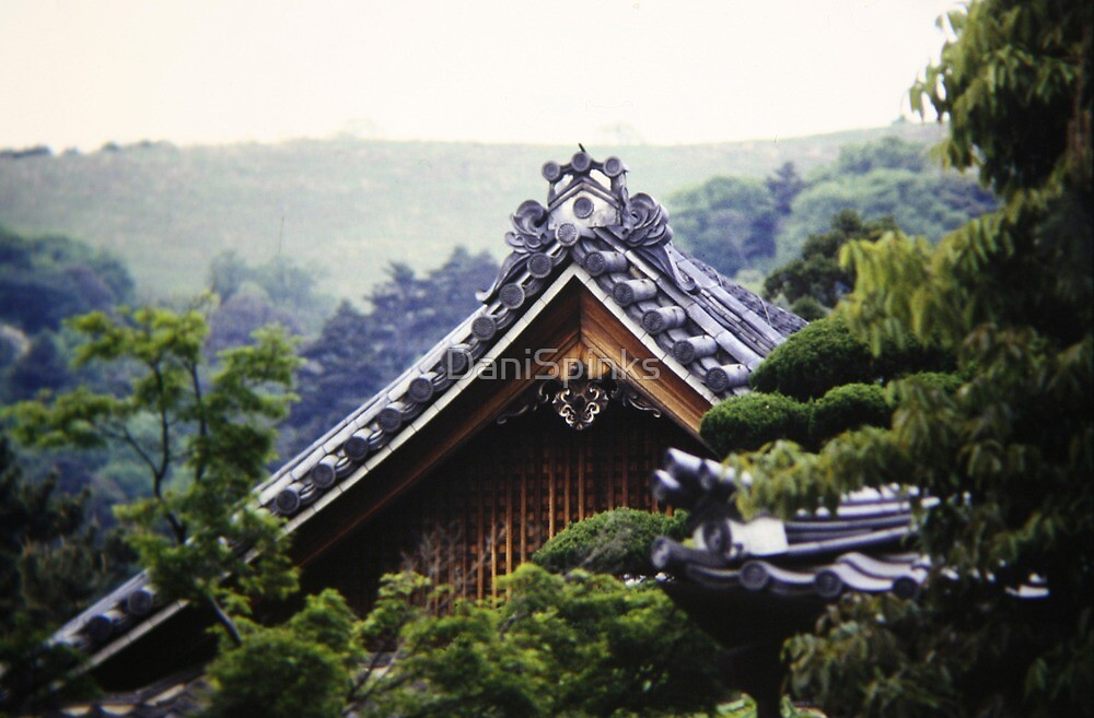 Nara Temple Rooftop by DaniSpinks