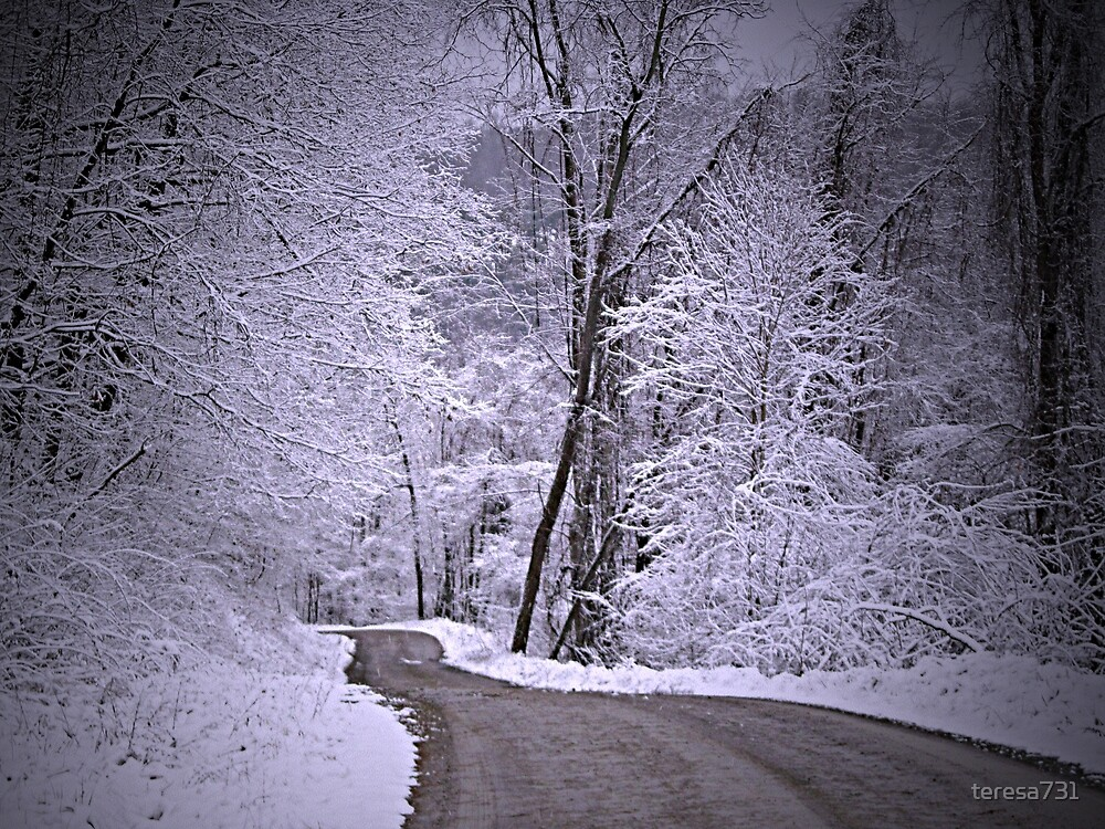 Winter Wonderland by teresa731