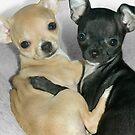 """Chummy Chihuahuas"" - Looks like Puppy Love by ArtThatSmiles"