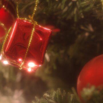 Christmas Present by pnjmcc