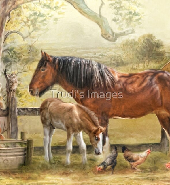 Farmyard Friends by Trudi's Images