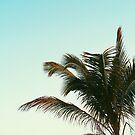 Tropical Beach Days by AlexandraStr