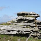 Combestone Tor #10 by kalaryder