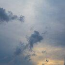 Shining Through by Malik Jayawardena