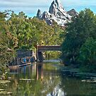 Expedition Everest by Paul Louis Villani