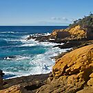 Bermagui, NSW by johnrf