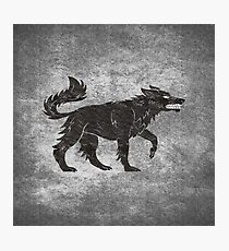 Direwolf Photographic Print