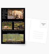 Legend of the Spirit Bear Postcards