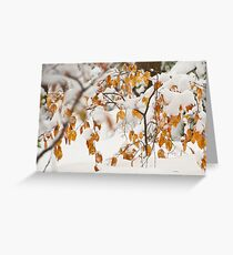 Winter Comes Early: Snowy Beach Leaves. Greeting Card