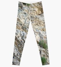 Weathered Rock, Moray Leggings