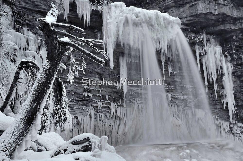 Winter Wonderland by Stephen Vecchiotti