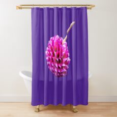 Pink Striped Dahlia  Shower Curtain