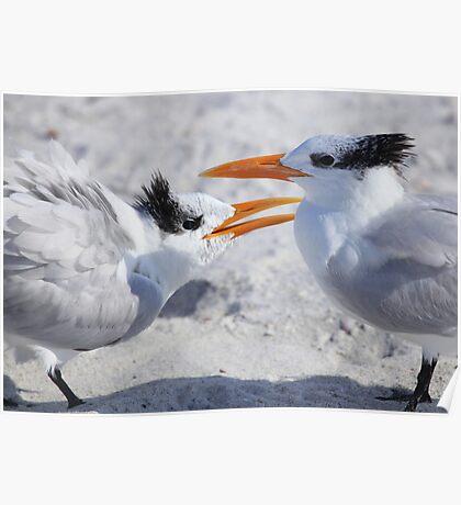 """ Hey ! Mom Said it Was MY Tern "" Poster"