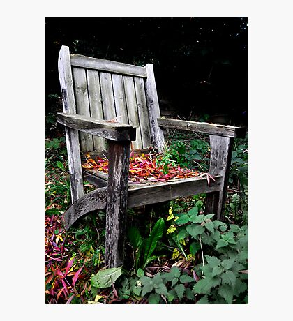 No one wants to sit here anymore :o( Photographic Print