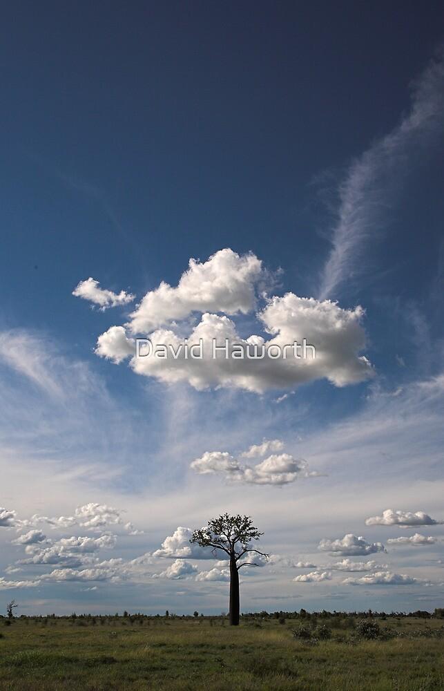 Take to the sky by David Haworth