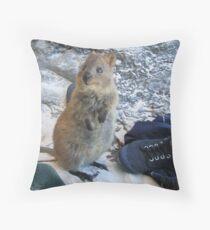 Quokka Throw Pillow