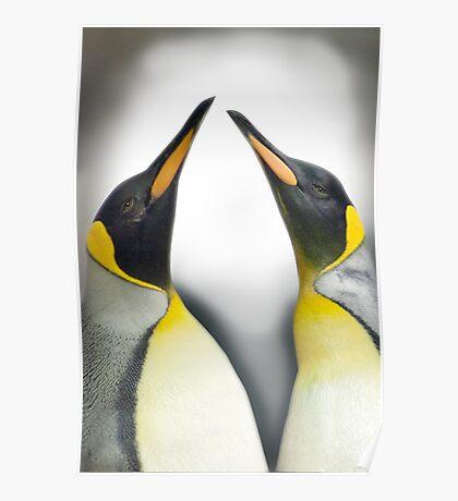 """""""Cool Affection"""" - King Penguins Poster"""