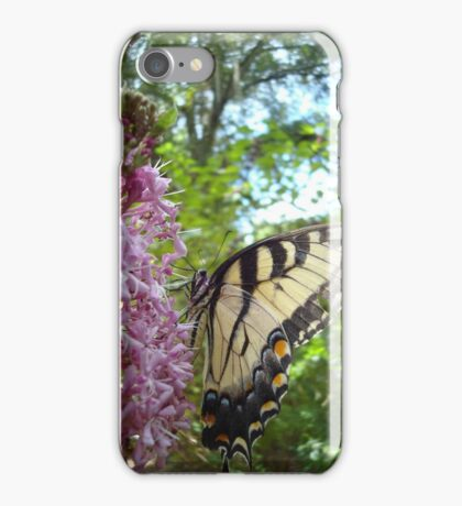 Tiger Swallowtail on Clerodendrom iPhone Case/Skin