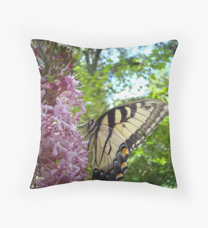 Tiger Swallowtail on Clerodendrom Throw Pillow