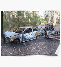 Two torched cars in the bush Poster