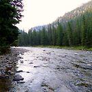 Gallatin River, Montana USA by kkphoto1