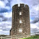 Farleigh Hungerford Castle  ( 8 )  by Larry Davis