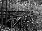 Long Wooden Footbridge by Marcia Rubin