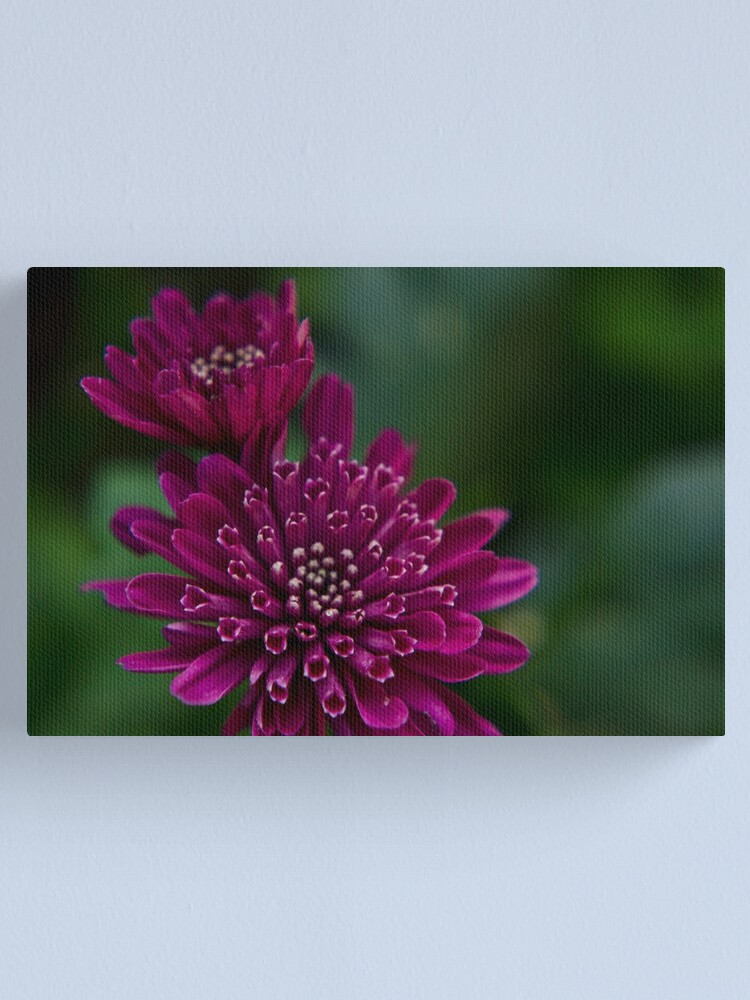 Alternate view of Floral composition Canvas Print