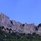 Chateau de Peyrepertuse by WatscapePhoto