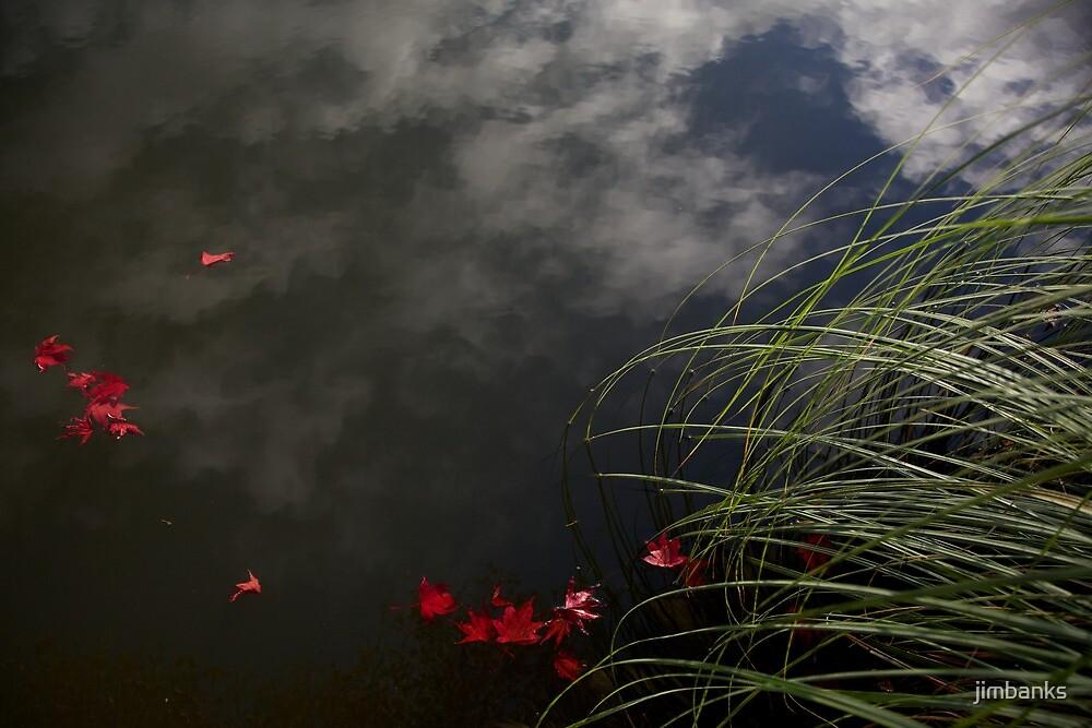 Autumn Lake - Sheffield Park by jimbanks