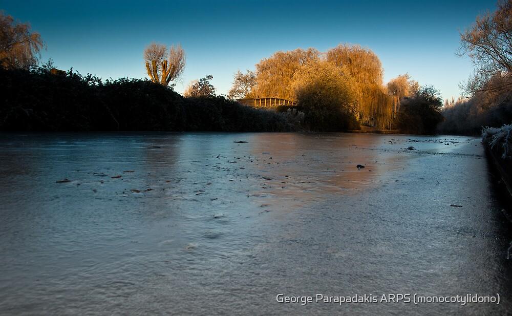 Skating away on the thin ice of the new day by George Parapadakis ARPS (monocotylidono)