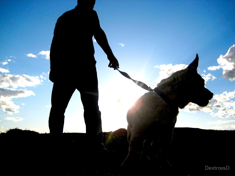 Man and Dog by DextrousD