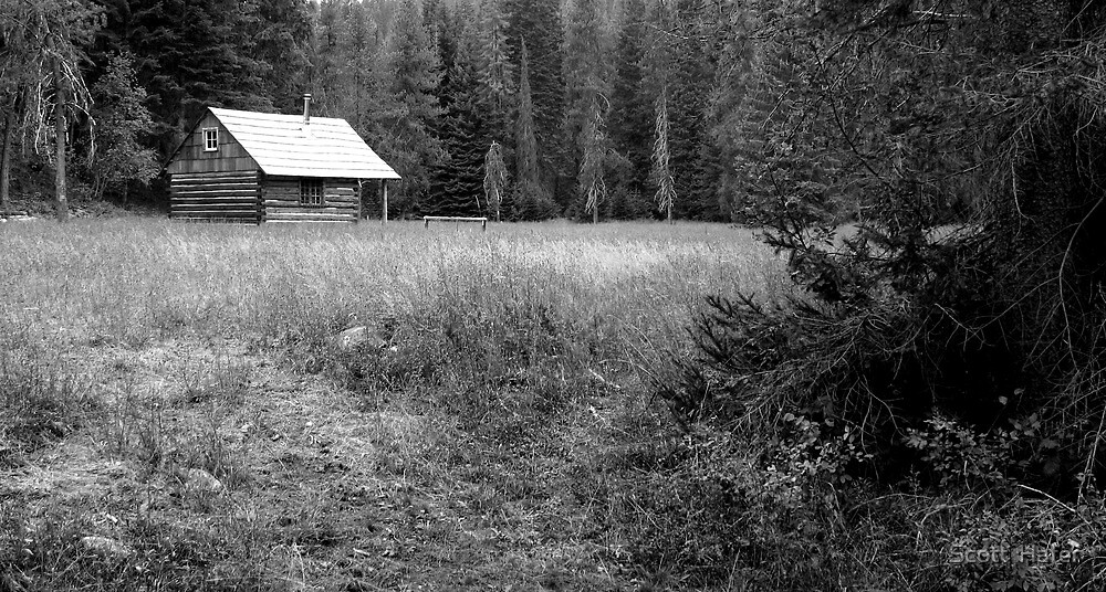 The Lone Cabin by Scott  Hafer