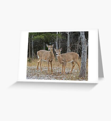 The Onlookers Greeting Card